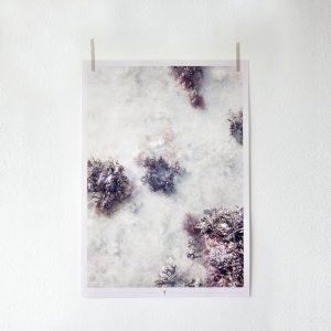 poster_redseaweed