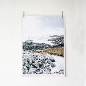 poster_Ireland
